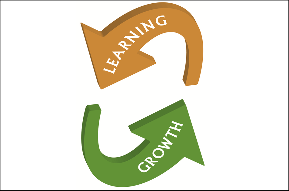 Learning and Growth as a Career Protection and Employee Retention Tool