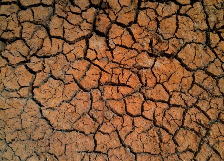 Appreciation Drought
