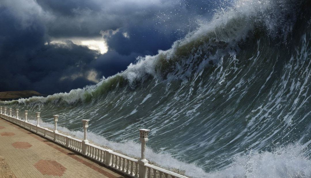 The Tsunami is Coming